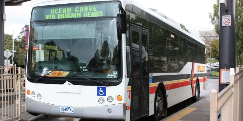 Geelong Bus