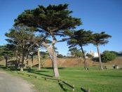 Portarlington Park