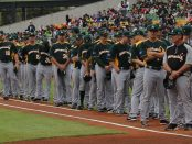 Australia National Baseball Team